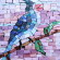 Mary's Bird thumbnail