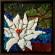White Lotus thumbnail